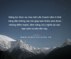 Pure_Coaching_2