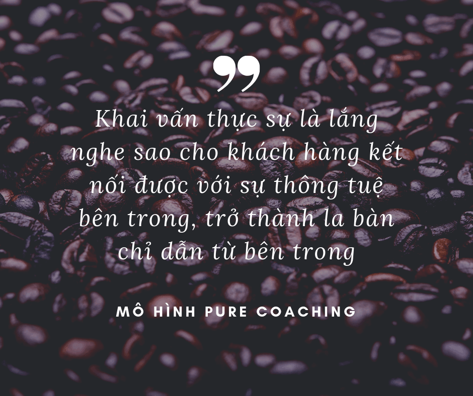 pure_coaching_model2