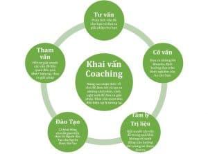 life coaching pure coaching