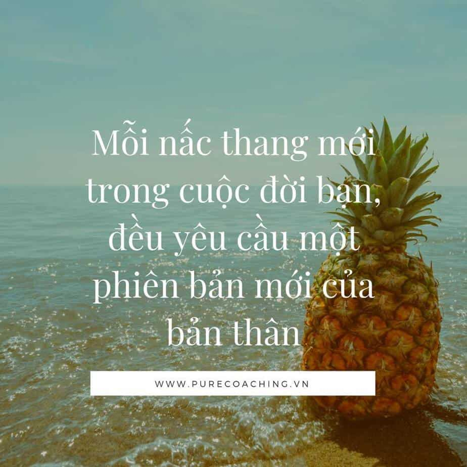 pure coaching viet nam