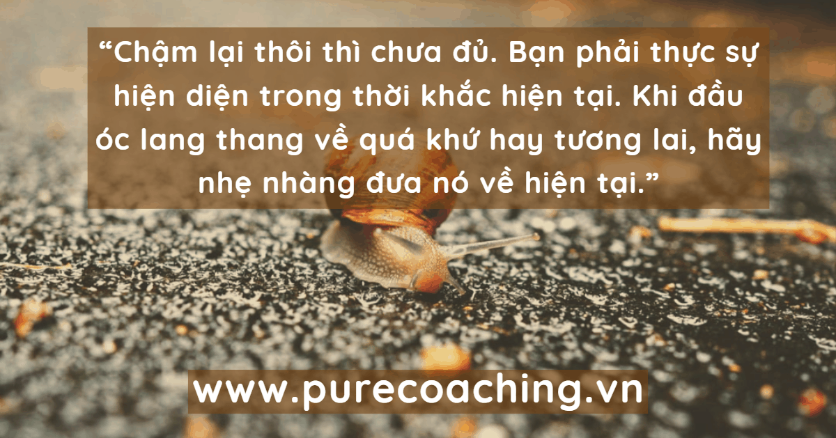coaching-happiness-song-cham