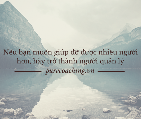 pure_coaching_training